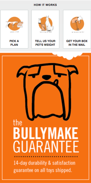 Bullymake newsletter subscription sale