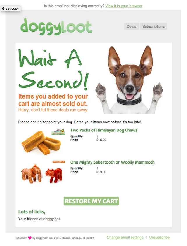 Doggy Loot cart abandonment email
