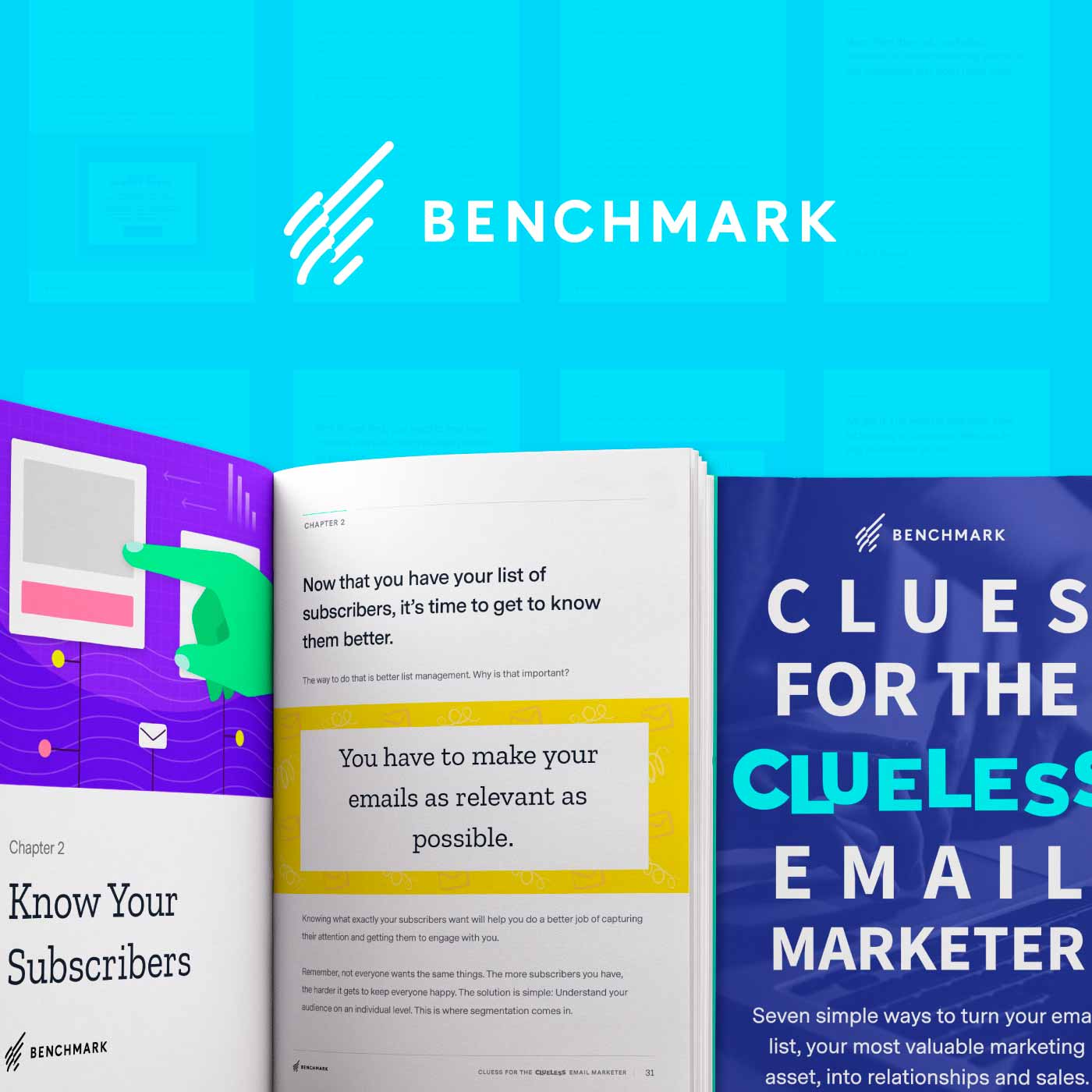 We Wrote a Book! Clues for the Clueless Email Marketer